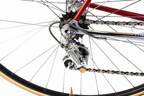 COLNAGO Master Saronni Retinato 1984, Campagnolo 50th, Eroica vintage steel collectible bike