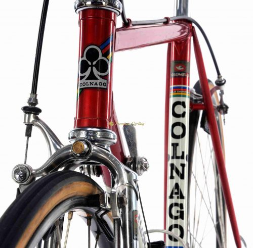 1983 COLNAGO Nuovo Mexico Saronni, Campagnolo 50th Ann groupset, Eroica vintage steel collectible bike by Premium Cycling